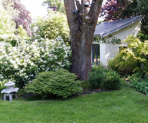 Les jardins l 39 ancienne viroflay 78 for Jardin japonais 78