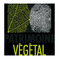 Patrimoine Végétal