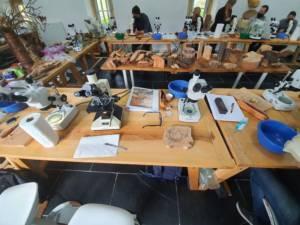 table laboratoire atelier arbre