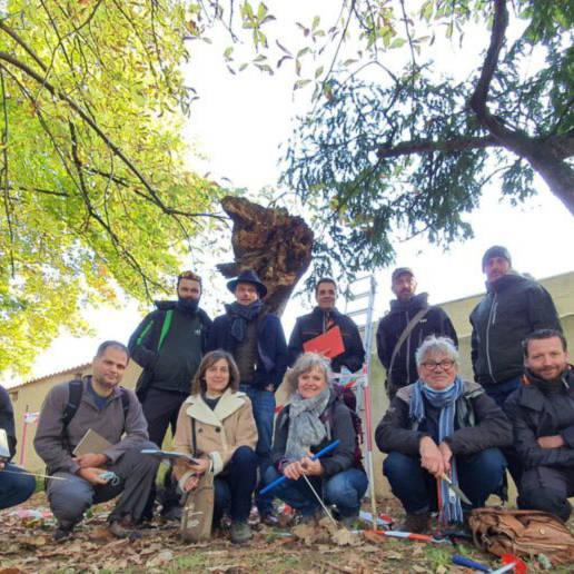 atelier arbre groupe biologie champignons