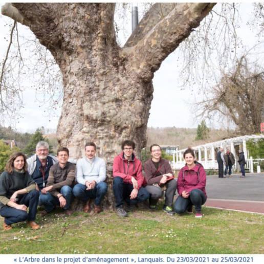 photogroupe atelier arbre prjet amenagement