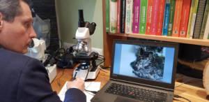 image binoculaire retranscrite sur écran