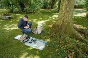 préparation expertise arboricole